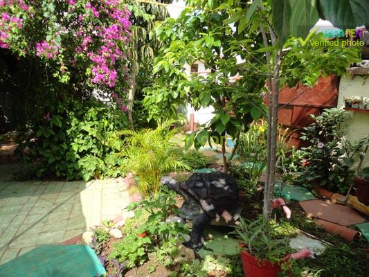 Lida - Wonderful and spacious terrace surrounded by plants
