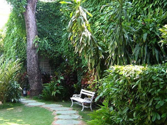 Villa Balari - Garden next to the terrace