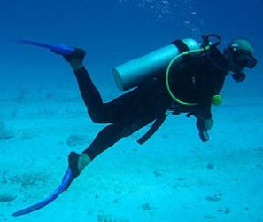 Snorkeling and Underwater Photo Packages Services